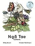 img - for Nga Tae-Colours (Reo Pepi-rua) (Maori Edition) book / textbook / text book