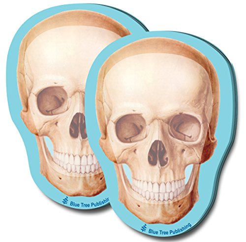 Halloween Skull Stick Notes, 2 Pack-100 Sheets Per Pack -