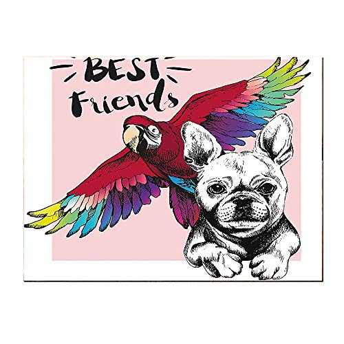 (SATVSHOP Art Work painting-16Lx16W-Modern French Bulldog and Tropical Parrot Figure with B Friends Phrase Portrait Dign Self-Adhesive backplane/Detachable Modern Decorative Art.)
