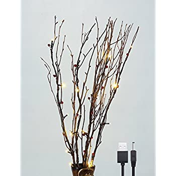 Lightshare 30inch 20led Natural Birch Berry Branch Light Red Berries Warm White Light Battery Powered For Home Decoration