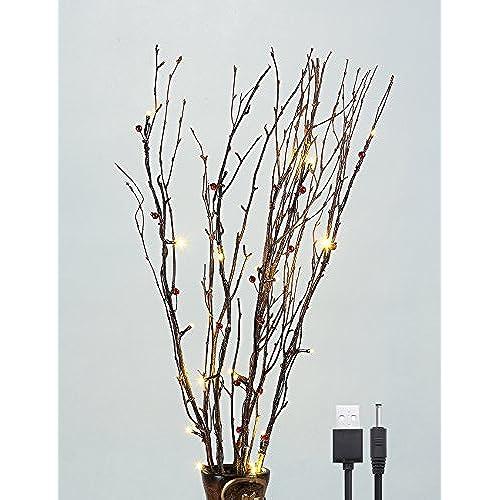 Lighted Vases Amazon