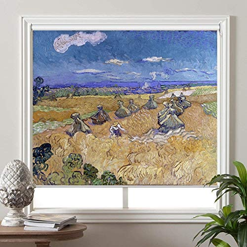 PASSENGER PIGEON Blackout Window Shades, Stacks with Reaper, by Vincent Van Goah, Premium UV Protection Custom Roller Blinds, 51 W x 96 L