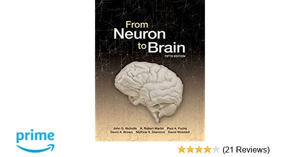From neuron to brain 8601421456982 medicine health science books from neuron to brain 8601421456982 medicine health science books amazon fandeluxe Image collections