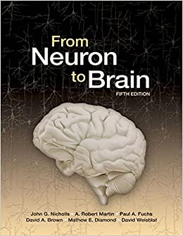 Buy from neuron to brain book online at low prices in india from buy from neuron to brain book online at low prices in india from neuron to brain reviews ratings amazon fandeluxe Images