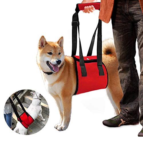 Color You Portable Dog Lift Support Rehabilitation Harness Canines Aid for Disable, Injured, Elderly Pet with Weak Legs…