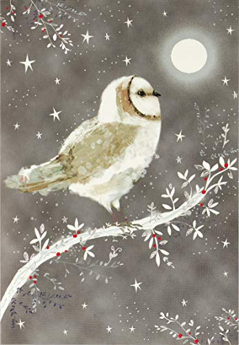 - Starry Night Owl Small Boxed Holiday Cards (Christmas Cards, Greeting Cards)
