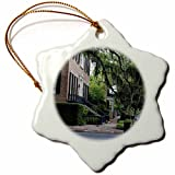 3dRose ORN_143875_1 USA, Georgia, Savannah, Residential Street Us11 Rti0021 Rob Tilley Snowflake Ornament, Porcelain, 3-Inch