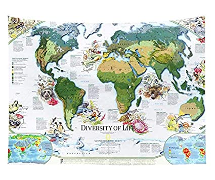 Amazon Com Seedworld Tapestry New World Map Print Fashion Wall