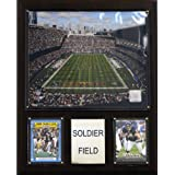 NFL Soldier Field Stadium Plaque