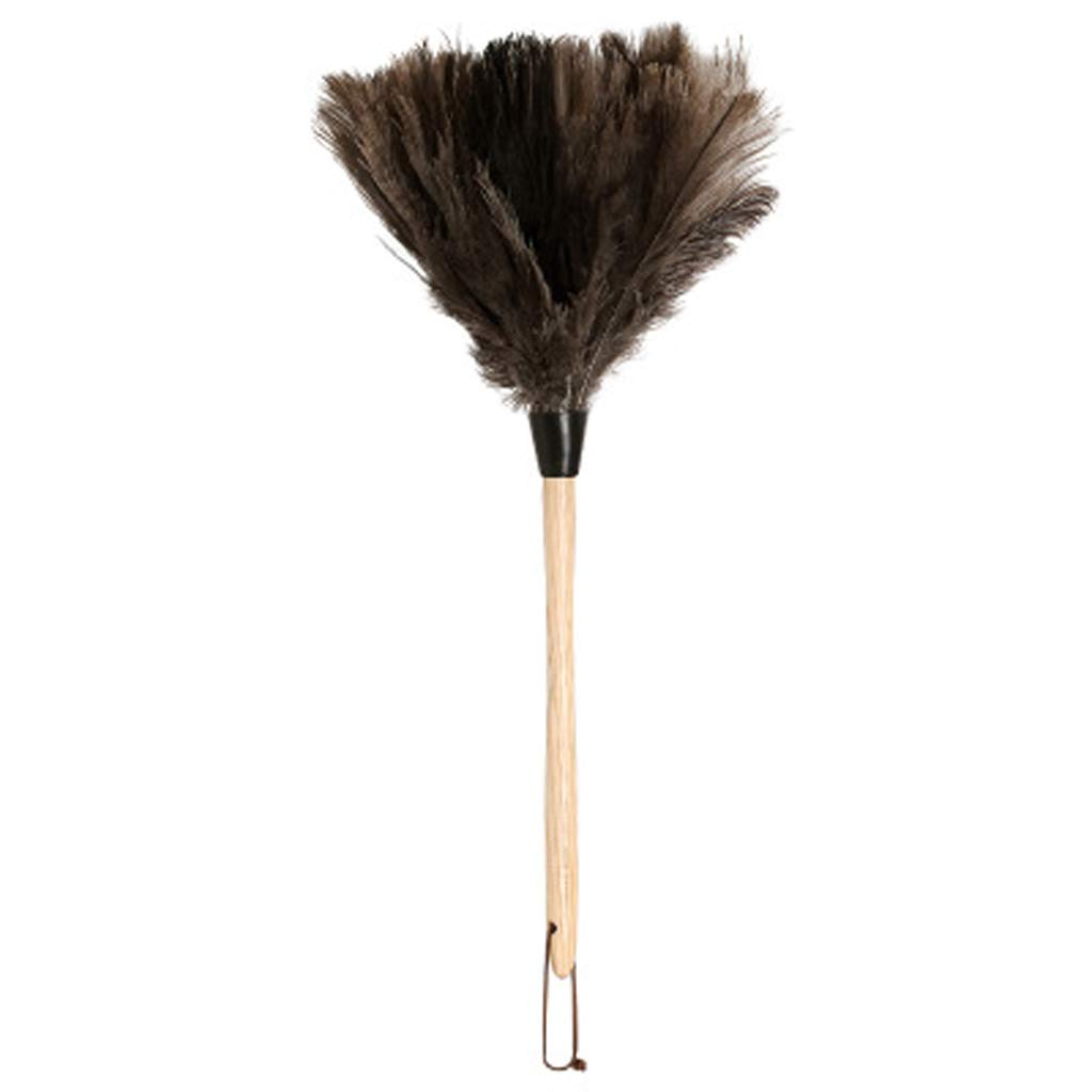 ZHANGY Hand Duster- Ostrich Feather Wood Handle, Spider Web Duster/Anti-Static car/Home Dust Dirt Cleaning Tool,B