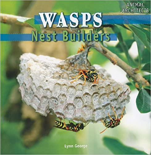 Book Wasps: Nest Builders (Animal Architects) by Lynn George (2010-08-15)