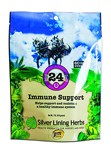 Silver Lining Herbs, 24 Immune Support, 60 Servings