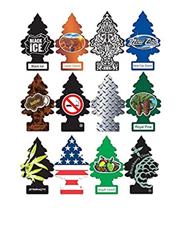 Little Trees Home and Car Air Fresheners 12 Pack Most Popular Masculine Scents - Little Trees Car
