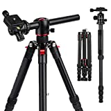 "K&F Concept 60' Professional Aluminum DSLR Video Overhead Camera Tripod Monopod 5 Sections with 3/8"" Exchangeable 360 Degree Ball Head and Quick Release Plate Transverse Center Column TM2515T"