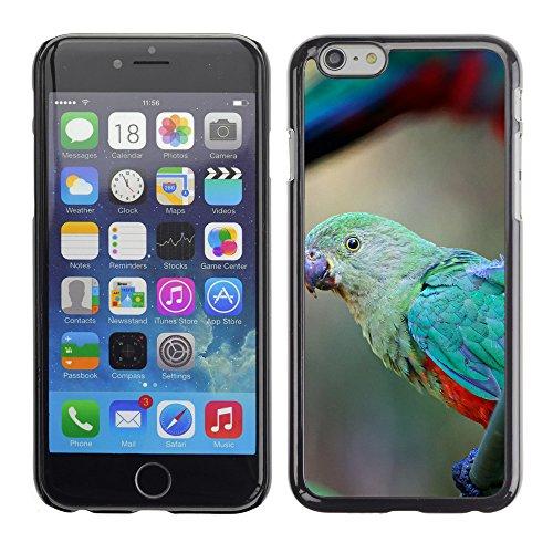 "Premio Sottile Slim Cassa Custodia Case Cover Shell // F00019739 perroquet vert // Apple iPhone 6 6S 6G PLUS 5.5"""