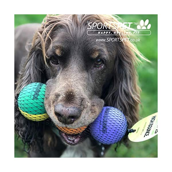 SPORTSPET High Bounce Rubber Dog Balls 3 pack 2