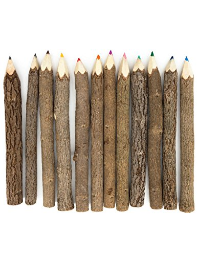 Assorted-Stick Twig Colored Outdoor Wooden Pencils Tree Child Camping Decorative Color by BSIRI (Image #1)