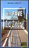 Un pavé dans la Loire par Larhant