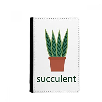 beatChong Cactus En Maceta De Plantas Suculentas Titular del Pasaporte Monedero Tarjeta De Caso De La Cubierta Cartera De Viaje Verde: Amazon.es: Equipaje