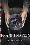 Frankenstein (Illustrated) (Top Five Classics Book 23)