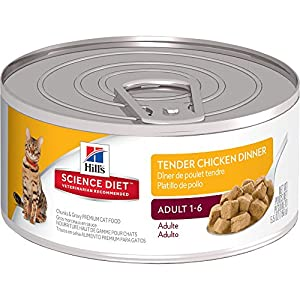 Hill's Science Diet Adult Tender Dinners Chunks & Gravy Cat Food, 24-Pack