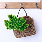 Artificial-Plants-10pcs-Set-Grass-Artificial-Plants-Home-El-Store-Dest-Decor-Decorative-Party-Potted-Pots-Tall-Exterior-Marimo-Ivy-Baskets-Herbs-Cheap-Planters-Clearance