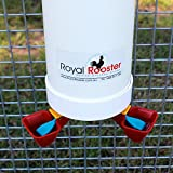 Royal Rooster Twin Cup Drinker & Feeder Set