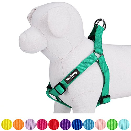 Blueberry Pet 12 Colors Step-in Classic Dog Harness, Chest Girth 20