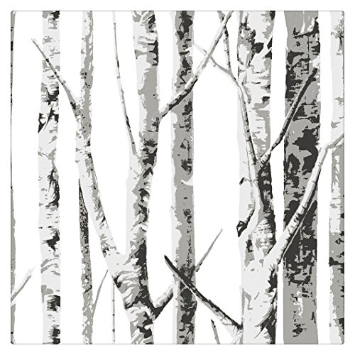 HaokHome 9002 Birch Treee Wood Wallpaper Off White/Black/Grey/Silver for Home Bathroom Accent Wall 20.8