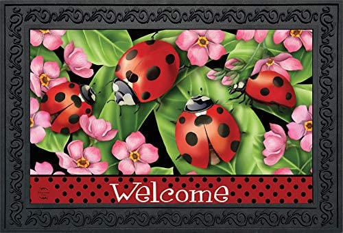 Briarwood Lane Ladybugs on Leaves Spring Doormat Welcome Indoor Outdoor 18 x30