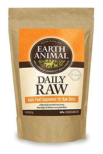 Daily Raw Complete Powder