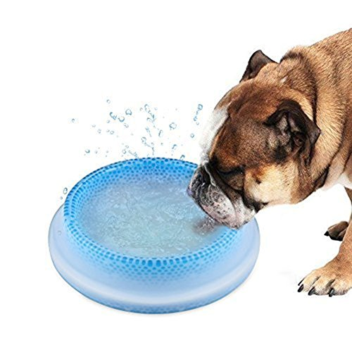 Pet Frosty Bowl, Frosty Bowl Keeping Water Cool for 8 Hours, Fresh and Chilled, Holds 16oz, Perfect for the Dog in Hot Summer - Blue