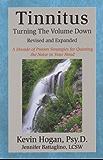 Tinnitus: Turning the Volume Down (English Edition)