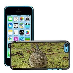 Super Stella Slim PC Hard Case Cover Skin Armor Shell Protection // M00107917 Rabbit Bunny Pet Nature // Apple iPhone 5C