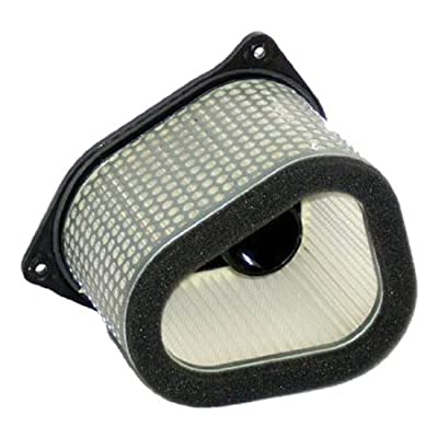 Hiflofiltro HFA3906 Premium OE Replacement Air Filter: Automotive