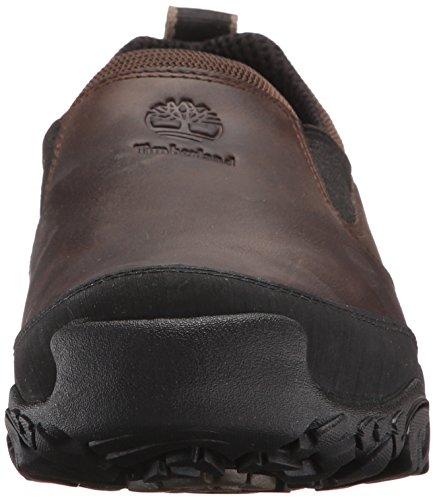Timberland Mt Abram Resbalón-en los zapatos Caminar Café Oscuro