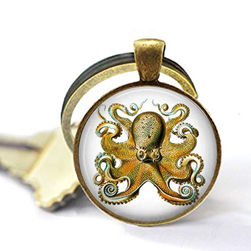 Octopus by Ernst Haeckel - Victorian Naturalist Jewelry - Octopus Keychain - Gift for Snorkler Or Scuba Diver - Octopus Jewelry Keychain Key Chain Elegant White Peacock Oval Pendant