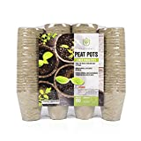 Greenomy 3'' Peat Pots Pack of 100|Seed Starter Pots|Seedling Pots for Seedlings, Flowers and Vegetables|Eco-Friendly and 100% Biodegradable