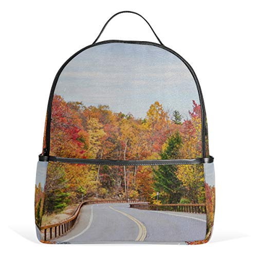 Backpack Autumn in The Hudson River Valley Womens Laptop Backpacks School Hiking Travel Daypack