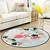 Zarbrina Cartoon Animal Round Area Rug and Carpet Tiger/Flamingo Design Washable Non-Slip Children/Kids Play Carpets