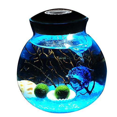 OMEM Aquarium Kits-Living Moss Ball, Valentine gift Sea Fan, Amazonite Gravel, Cone Seashell, Work Desk Decoration (One years old, Blue)