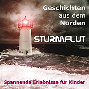 Sturmflut Hörbuch