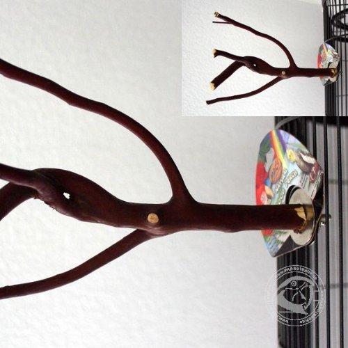 Mac's Creations Small Manzanita Perch