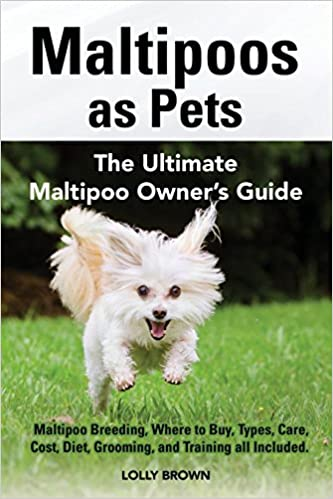 Maltipoos as Pets: Maltipoo Breeding, Where to Buy, Types
