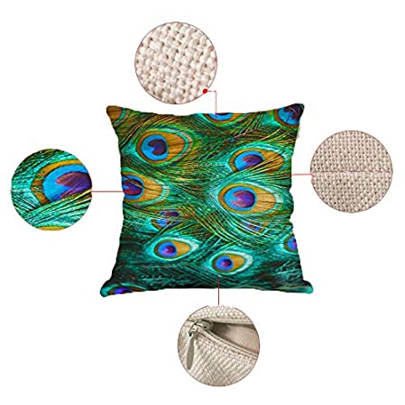 Vesub Peacock Print Pattern Embossed Decorative 18 x 18 Inches Throw Pillow Case Cushion Covers WITHOUT FILLER, #4