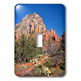 3dRose Danita Delimont - Deserts - Arizona, Sedona, Red Rock Country, Thunder Mountain - Light Switch Covers - single toggle switch (lsp_258713_1)