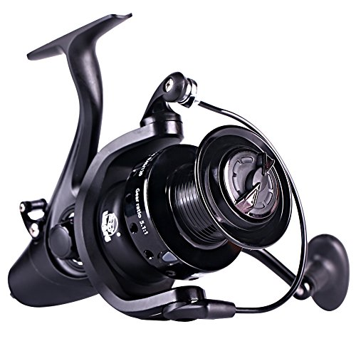 Sougayilang Spinning Fishing Reel,12+1BB Metal Body Smooth, Carp Spinning Reels, for Saltwater and Freshwater Fishing-BE5000