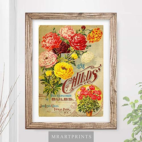 VINTAGE RANUNCULUS BUTTERCUPS FLOWERS FLORAL ADVERTISING ART PRINT Shabby Chic Home Decor Victorian Illustration Painting Wall Picture A4 A3 A2 (10 ()