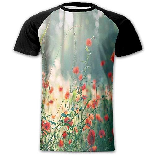 Wild Red Poppy Flowers Field Summertime Sunbeams Gardening Bedding Plants Decorative Men's Short Sleeve Raglan T