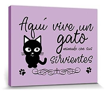 1art1® Gatos - Aquí Vive Un Gato Mimado con Sus Sirvientes Cuadro, Lienzo Montado sobre Bastidor (50 x 40cm): Amazon.es: Hogar